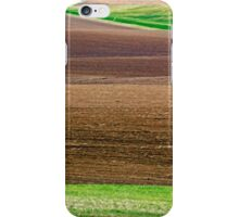 Textures of Idaho 2 iPhone Case/Skin