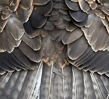 Symmetric feathers by welovevintage