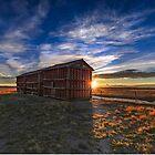 Prairie Grainerys by Patrick Kavanagh