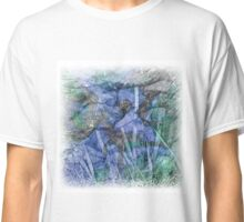 The Atlas Of Dreams - Color Plate 28 Classic T-Shirt