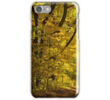 Fall In Michigan iPhone Case/Skin
