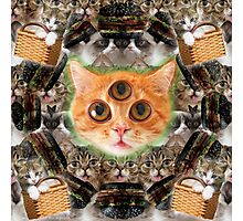 third eye ascended feline master Photographic Print