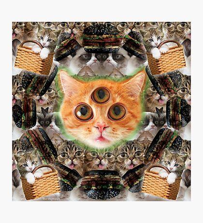third eye ascended feline master Photographic Print