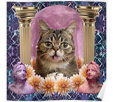 internet cat paradise Poster