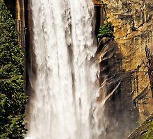 Spring Thunder - Vernal Falls - Yosemite Valley, California USA by TonyCrehan