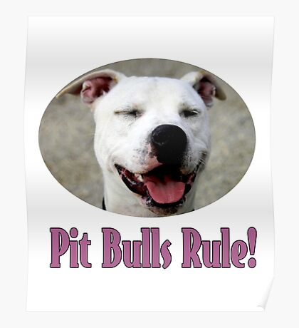 Pit Bulls Rule! Poster
