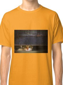 Curious Looks of Calico Cat Classic T-Shirt