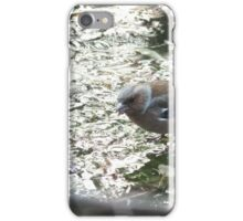 Bird on frozen pond iPhone Case/Skin