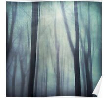 abstract trees in fog Poster