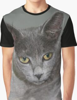 Beautiful Portrait of A Grey Russian Cross Tabby Cat Graphic T-Shirt