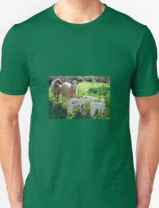 Two Ewes and Three Lambs Grazing T-Shirt