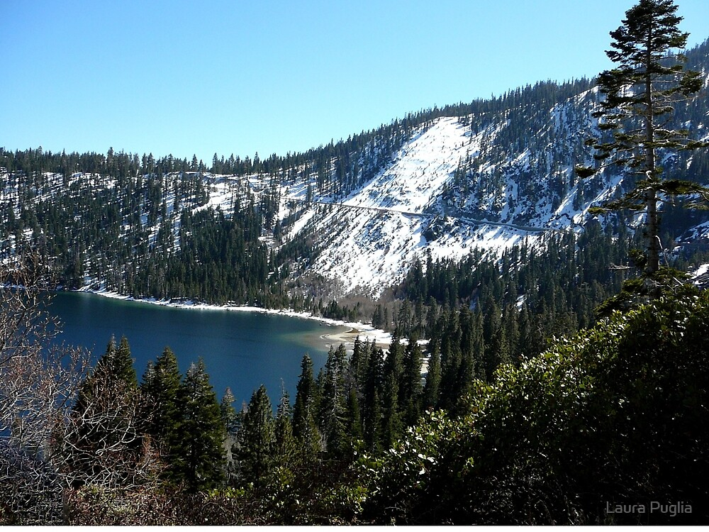 Beautiful South Lake Tahoe by Laurie Puglia