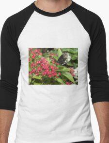 Singapore Butterfly Garden - Black Men's Baseball ¾ T-Shirt