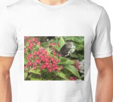Singapore Butterfly Garden - Black Unisex T-Shirt