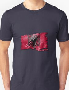 Albanian torn flag with structure T-Shirt
