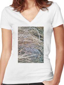 Grass Studies, Winter Seedheads Women's Fitted V-Neck T-Shirt