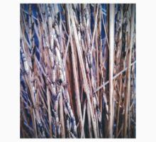 Grass Studies, Segments One Piece - Long Sleeve