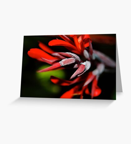 Red Spike Greeting Card