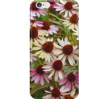 Echinacea floral illustration phone case iPhone Case/Skin