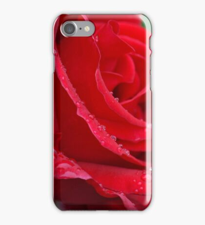 Single red rose with rain drops iPhone Case/Skin