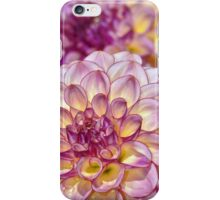 Purple dahlia flowers iPhone Case/Skin