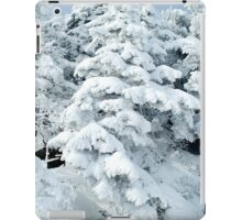 At The Top iPad Case/Skin