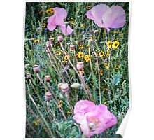 Front Yard Meadow 2014 Poster