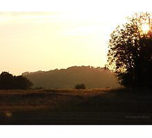Sunbeam Photographic Print