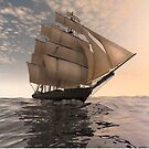 Tradewinds.  by Carol and Mike Werner