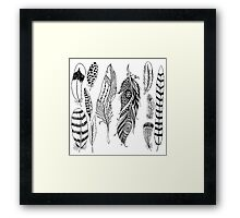 Indian Feathers Framed Print