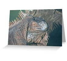 IGUANA - THE REFLECTIVE REPTILE Greeting Card
