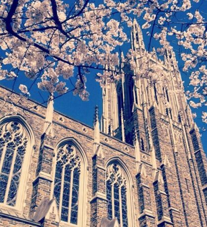 Duke Chapel With Cherry Blossoms Sticker
