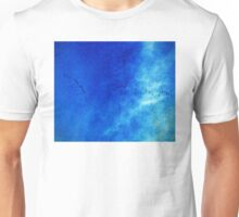 Sandhill Cranes in Flight Unisex T-Shirt