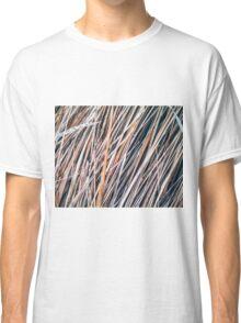 Grass Studies, Winter Wind II Classic T-Shirt