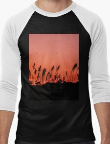 Dragonflies Over Dune Grass Men's Baseball ¾ T-Shirt