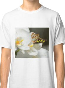 Butterfly on White Orchid  Classic T-Shirt