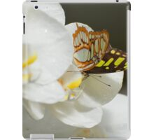 Butterfly on White Orchid  iPad Case/Skin