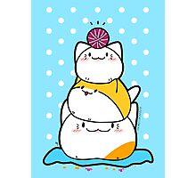 Kawaii Cat Aiko With Yarn Ball & Friends Photographic Print