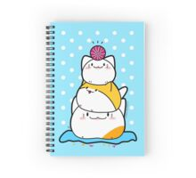 Kawaii Cat Aiko With Yarn Ball & Friends Spiral Notebook