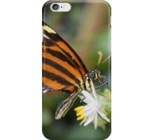 Orange Butterfly on White Flower iPhone Case/Skin