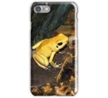Dart Frog iPhone Case/Skin