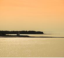Nova Scotia Shoreline at Sunset Photograph by Tanya Legere