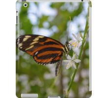 Butterfly on Twig with White Flowers iPad Case/Skin