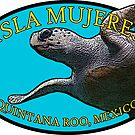 Isla Mujeres - Quintana Roo Mexico - Turtle by IntWanderer