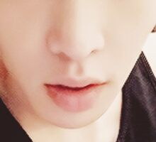 Lay from EXO Sticker