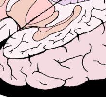 Open Mind Sticker