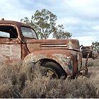 Pair of old gems on the opal fields of Lightning Ridge by DashTravels
