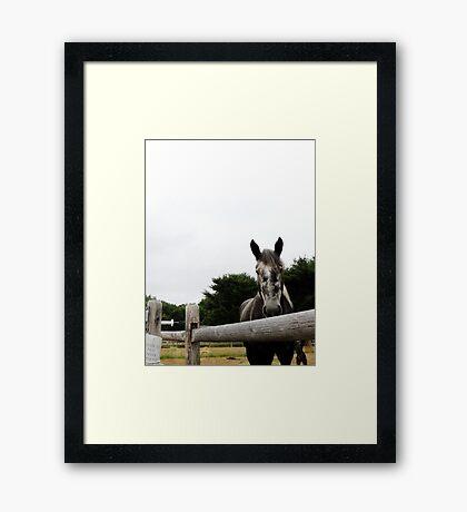 My Wonderful Yogi Framed Print