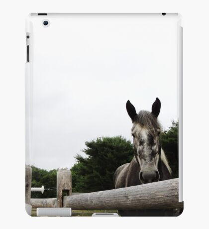 My Wonderful Yogi iPad Case/Skin