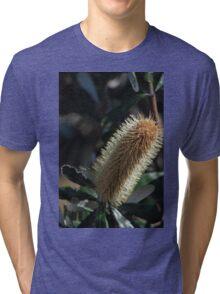 Yellow Banksia Tri-blend T-Shirt